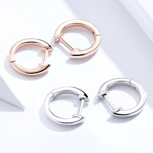 Lanko formos auskarai spalva Rose Gold ir Silver